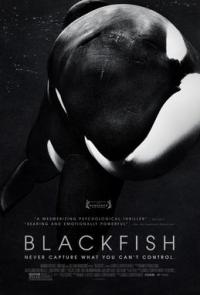 BLACKFISH_Film_Poster.jpg